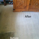 Bedroom-Carpet-Cleaning-San-Ramon