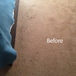 Bedroom-Carpet-Cleaning-San-Ramon-A
