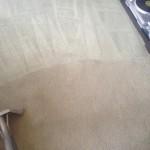 Carpet-Cleaning-San-Ramon