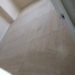 San-Ramon-Carpet-Clean-room