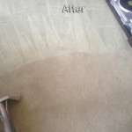 San-Ramon-Carpet-Cleaning-Company