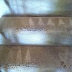 San-Ramon-Stairs-Carpet-Cleaning