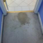 San-Ramon-Vomit-before-carpet