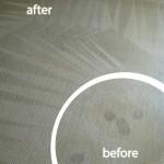 San-Ramon-Wine-Stain-Carpet-Cleaning