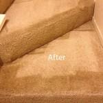 Stairs-Carpet-Cleaning-San-Ramon-B